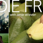 Avocados – OH…how I love thee!!